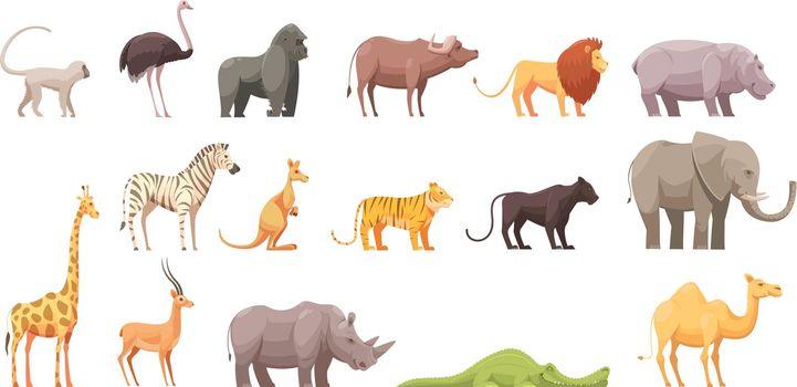 Wild Tropical Animals Set