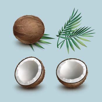 Set of coconuts