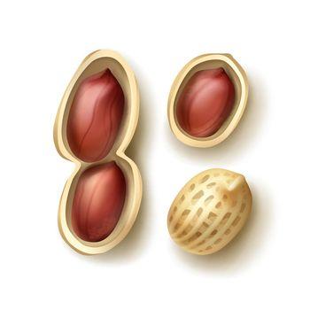 Set of peanuts