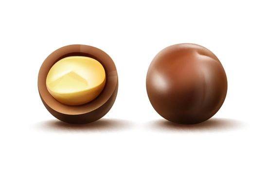 Macadamia nuts with shell