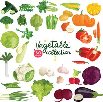 Vegetables And Herbs Collection