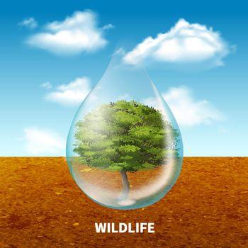 Wildlife Advertising Poster
