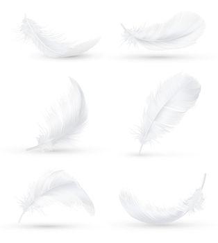 White Feathers Realistic Set