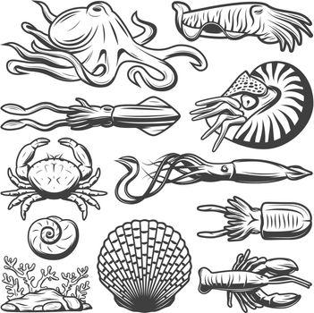 Vintage Marine Life Collection