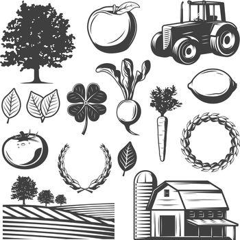 Vintage Natural Elements Set