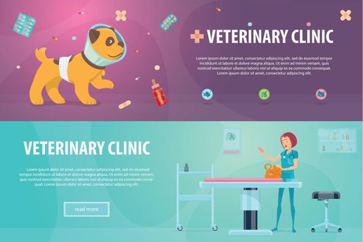 Veterinary Clinic Horizontal Banners