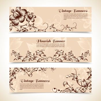 Vintage ornate flourish horizontal banner