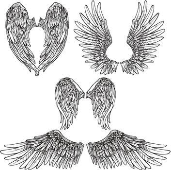 Wings Sketch Set