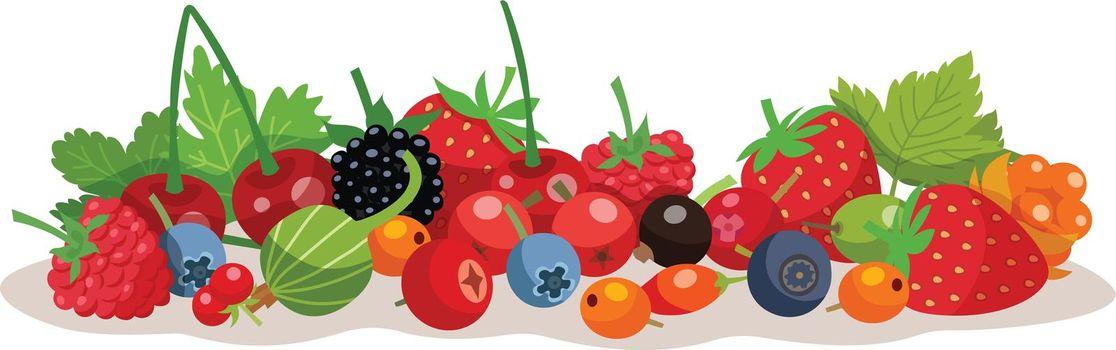 Berries Vector Illustration