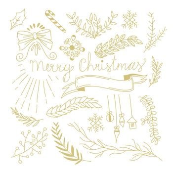 Winter Botanical Festive Hand Drawn Concept