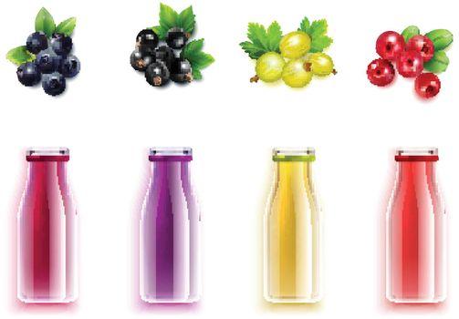 Berry Juice Realistic Set