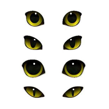 Cats Eyes Realistic Set