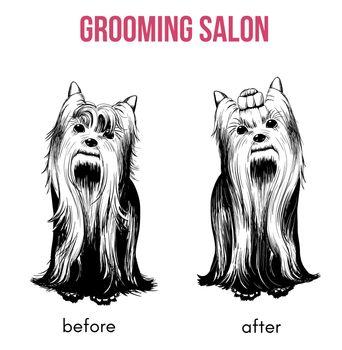 Beauty Dog Salon Template