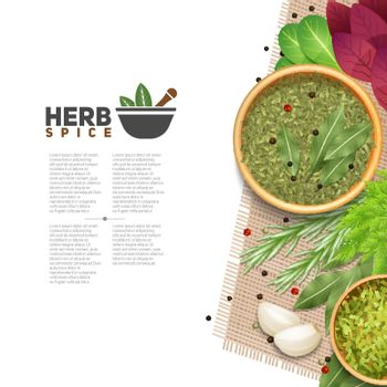 Herbs Spices Food Seasoning Information POster