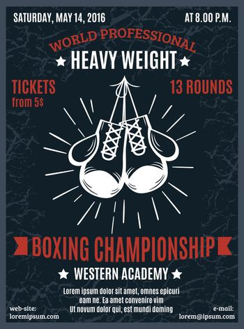 Boxing Professional Championship Poster