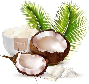 Coconut Realistic Illustration