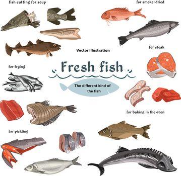Colored Sketch Seafood Set