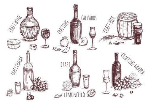 Craft Drink Sketch Elements Set