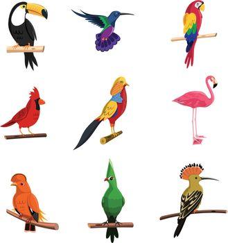 Exotic Birds Set
