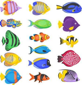 Exotic Fish Set