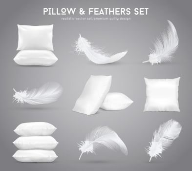 Feathers And Pillows Realistic Set