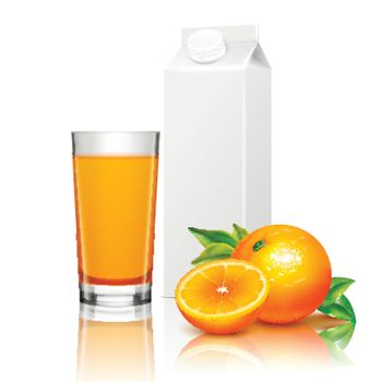 Fruit Juice Packaging Realistic Composition
