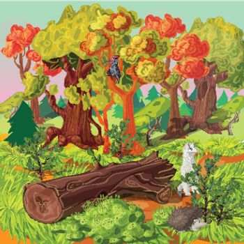 Forest And Animals Illustration