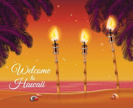 Hawaii Beach Torch Background