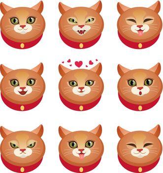 Cats emotions set