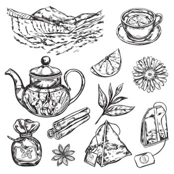 Herbal Tea Teapot