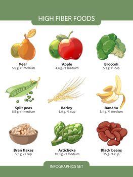 High fiber foods vector infographics