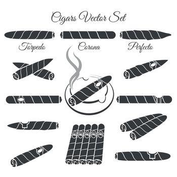 Hand drawn cigars vector