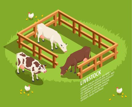 Livestock Isometric Composition