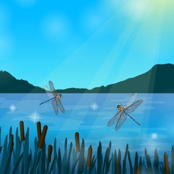 Insects Dragonflies Realistic