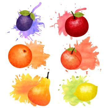 Fruit Watercolor Icon Set