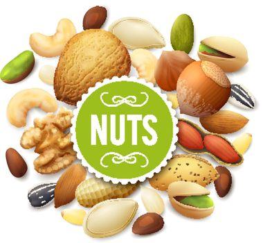 Nut Collection Illustration