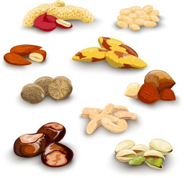 Nuts Decorative Set