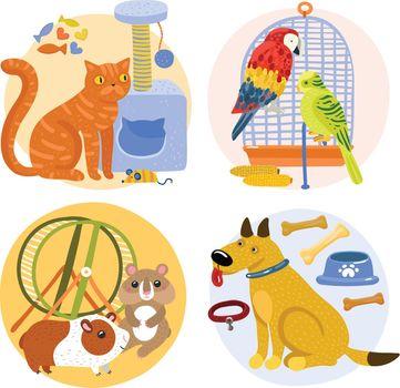 Pets Design Concept
