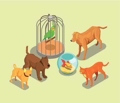 Pet Shop Isometric Background