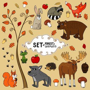 north forest animals