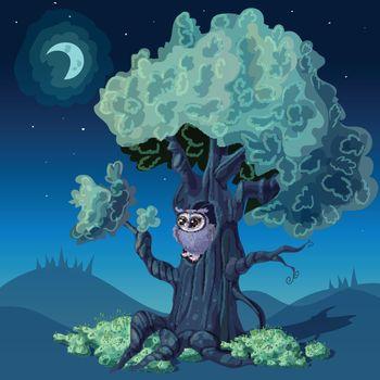 Night Forest Design