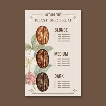 coffee arabica roast beans burn type of coffee , infographic design watercolor illustration