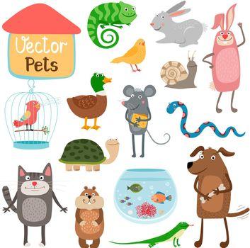 Vector pets