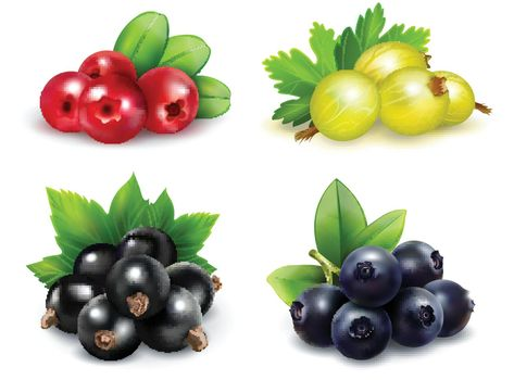 Berry Clusters Realistic Set