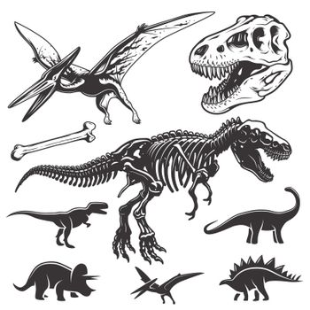 Set of dinosaurs elements