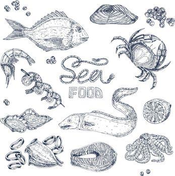 Seafood Monochrome Sketches Set