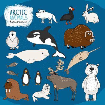 Set of hand-drawn arctic animals