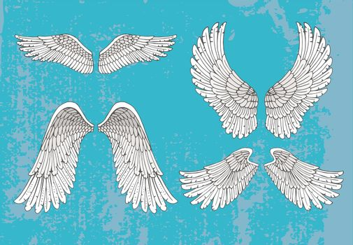 hand drawn white wings