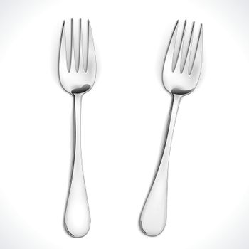 Vector Fork