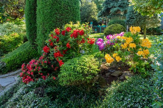 summer garden with conifer trees